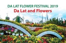 Da Lat Flower Festival 2019