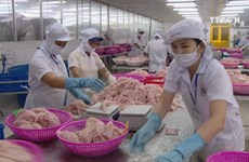 Vietnam posts economic growth of 7.02%