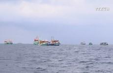 EC recognises Vietnam's improvements in combating IUU fishing