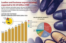 Leather and footwear export turnover expected to hit 24 billion USD