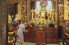 Spring arrives at ancient pagodas