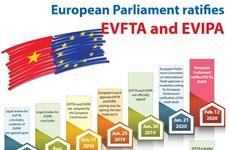 European Parliament ratifies EVFTA and EVIPA