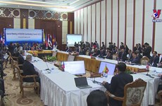 ASEAN enhances joint work against Covid-19