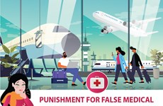 Punishment for false medical declaration