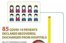 85 COVID-19 patients declared recovered, discharged from hospitals