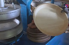 Areca nut leaf sheaths become eco-friendly utensils
