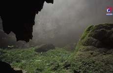 Son Doong among the 10 best virtual tours of world's natural wonders