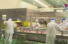 Vietnam eyes world's top 10 farm produce processing hubs