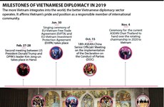 Milestones of Vietnamese diplomacy in 2019
