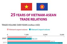 25 years of Vietnam-ASEAN trade relations