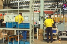 Industrial production index in 8 months decreases