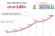 CPI in first 9 months of 2020 up 3.85%