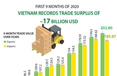 Vietnam records trade surplus of 17 billion USD in first 9 months of 2020