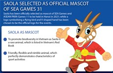 Saola selected as official mascot of SEA Games 31