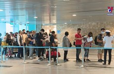 Foreign arrivals to Vietnam up by 7.6% in October