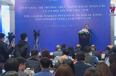 Opportunities for Vietnam to penetrate Halal food market