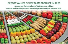 Export values of key farm produce in 2020