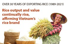 Vietnam elevates rice brand on global market