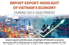 Import-export: Highlight of Vietnam's economy during 2015-2020