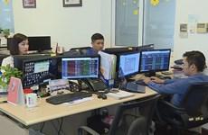 Vietnam's stock market witnesses historic year