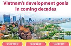 Vietnam's development goals in coming decades