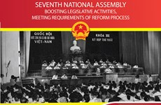 Seventh National Assembly: Boosting legislative activities, meeting requirements of reform process