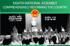 Eighth National Assembly: Comprehensively reforming the country