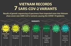 Vietnam records 7 SARS-CoV-2 variants