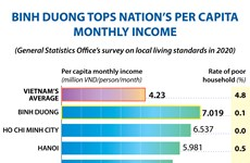 Binh Duong tops nation's per capita monthly income