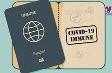 Pilot on welcoming vaccine passport holders under consideration
