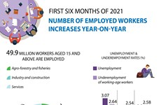 Number of employed workers increases in H1
