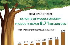 Exports of wood and forestry products hit 8.71 billion USD