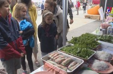 Vietnamese festival in France impresses visitors