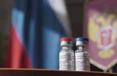 Vietnam produces test batch of Sputnik V vaccine