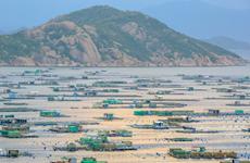 Binh Ba – 'Island of lobster' on Cam Ranh Bay