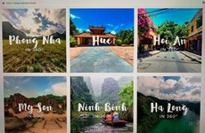 Domestic travel firms face risk of losing online market at home