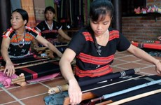 Programme honours cultural value of brocade