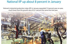 National IIP up about 8 percent in January