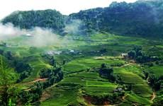 Moc Chau's beauty stuns visitors