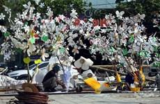 Dien Bien readies for Ban flower festival