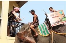 M'nong elephant worship in DaK Lak