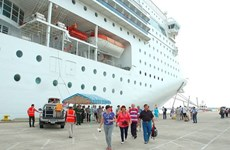 Visitors to Da Nang by cruise liners increase