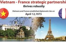 Vietnam - France strategic partnership thrives robustly