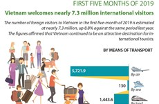 Vietnam welcomes nearly 7.3 million international visitors