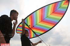 Colourful kites flaunt beauty at competition