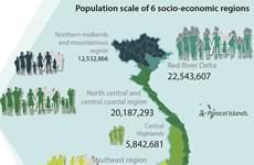 Vietnam population hits over 96 million