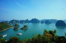 Vietnam tourism strives to earn over 30 billion USD
