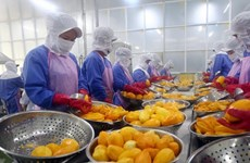 Vietnam strengthens goods traceability