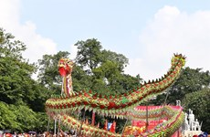 Hanoi's dragon dance wow audiences