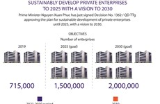 Sustainably develop private enterprises to 2025 with a vision to 2030